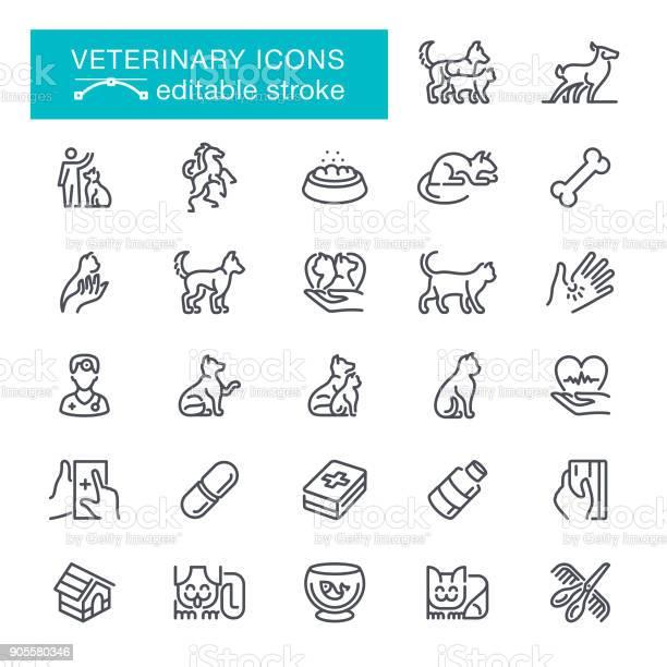Veterinary editable stroke icons vector id905580346?b=1&k=6&m=905580346&s=612x612&h=gzs4dunoyiaonyteters0ojsaumsz4z6dsdva6vwzg8=