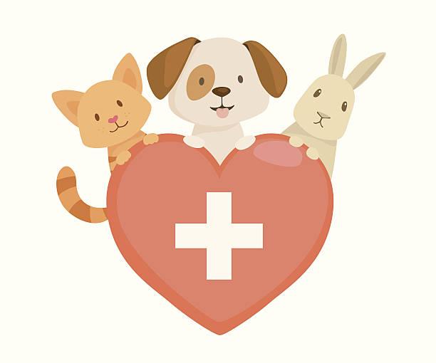 Veterinary heart emblem vector art illustration