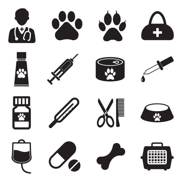 ilustrações de stock, clip art, desenhos animados e ícones de veterinary icons. set 2. black flat design. vector illustration. - lata comida gato