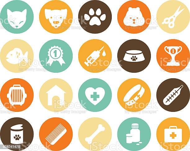 Veterinary icons set vector id528241475?b=1&k=6&m=528241475&s=612x612&h=yanugt adzwtqaxmjp4tgel ojwsuodhs9tzj7wsd8o=