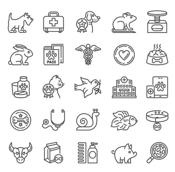 stockillustraties, clipart, cartoons en iconen met veterinaire iconen - slak