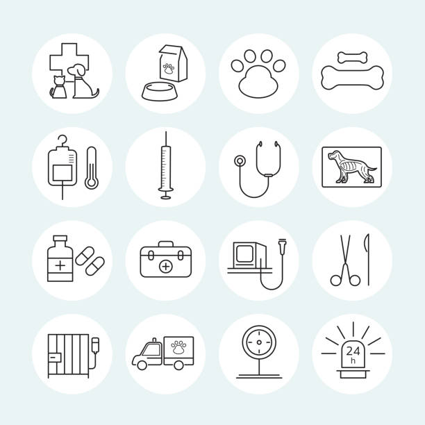 veterinary line icons set - veterinarian stock illustrations, clip art, cartoons, & icons