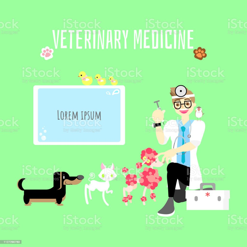Veterinary Medicine Cute Pet Animal Health Care With Doctor