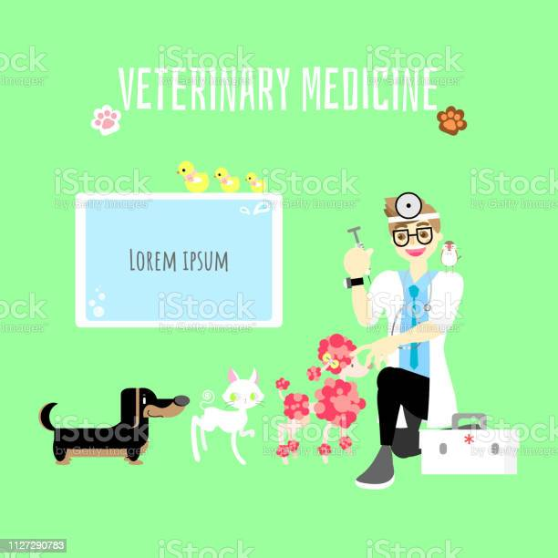 Veterinary medicine cute pet animal health care with doctor give to vector id1127290783?b=1&k=6&m=1127290783&s=612x612&h=kyuk huga0wvz2lb5jzzyi11els r6xdkqdrzkcz51o=