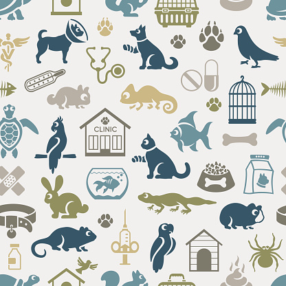 Veterinary Pattern
