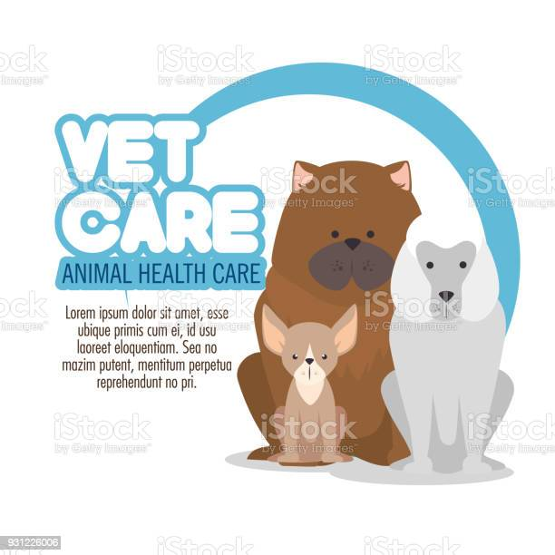 Veterinary pet clinic logo vector id931226006?b=1&k=6&m=931226006&s=612x612&h=vkcgc7 q0dvilmwoklme2q1 xtqefidl9yebdwedjmg=
