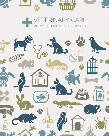 Veterinary Seamless Pattern