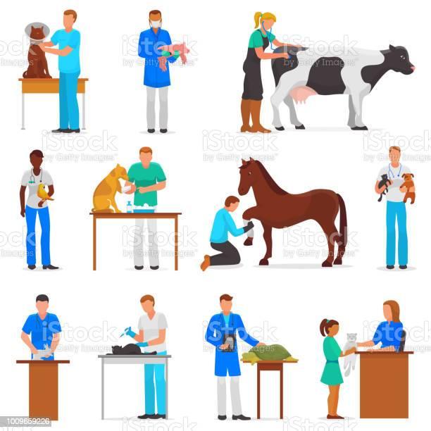 Veterinary vector veterinarian doctor man or woman treating pet cat vector id1009659226?b=1&k=6&m=1009659226&s=612x612&h=02iryfizxcv9utwp5miypkt5op4l mftwrb9j3fluiy=