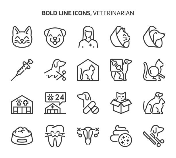 Veterinerian, bold line icons Veterinerian, bold line icons. The illustrations are a vector, editable stroke, 48x48 pixel perfect files. Crafted with precision and eye for quality. pets and animals stock illustrations