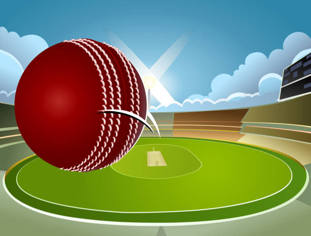 Cricket Vector Background Stock Image: Royalty Free Cricket Stadium Clip Art, Vector Images
