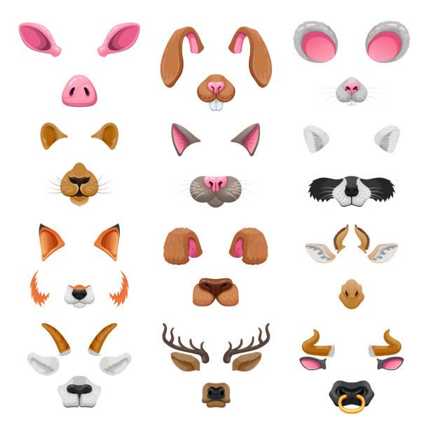 video-chat tier gesichter effekte - tierfotografie stock-grafiken, -clipart, -cartoons und -symbole