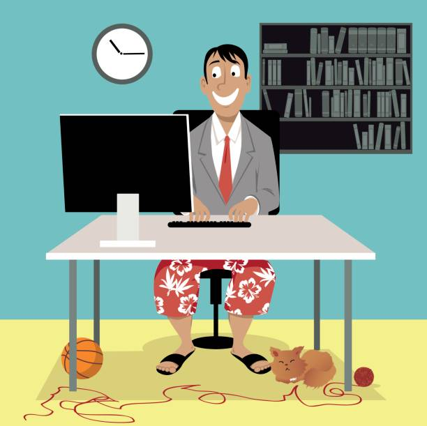 video job interview - working from home stock illustrations