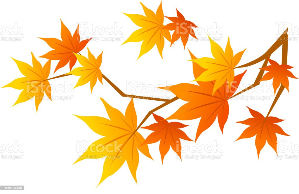 view of a Leaf royalty-free stock vector art