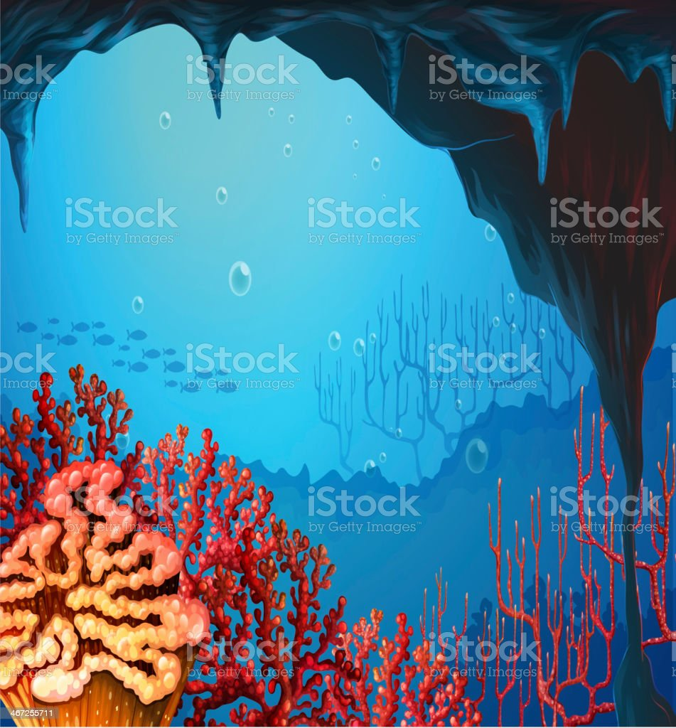 view of the coral reef vector art illustration