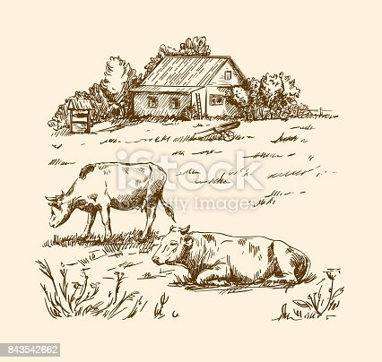 village houses and farmland. vector sketch drawn by hand on a grey background