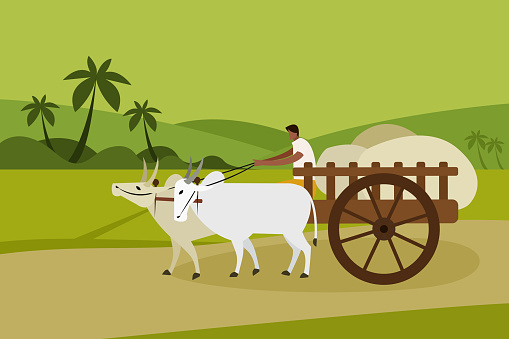 A villager transports goods in a bullock cart in rural India