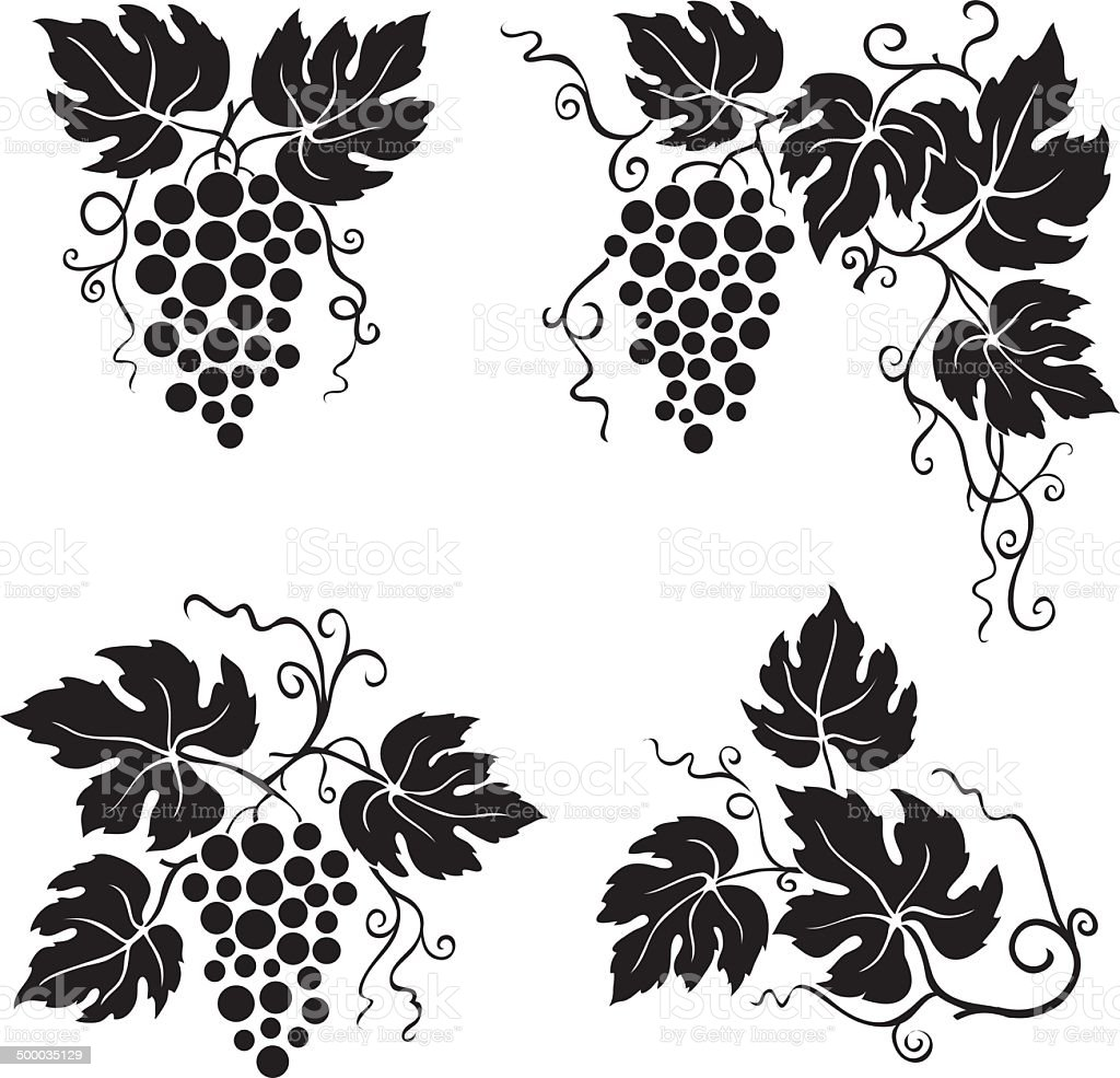 vine leaves and grapes royalty-free stock vector art
