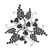 Vine Motif or Mandalla