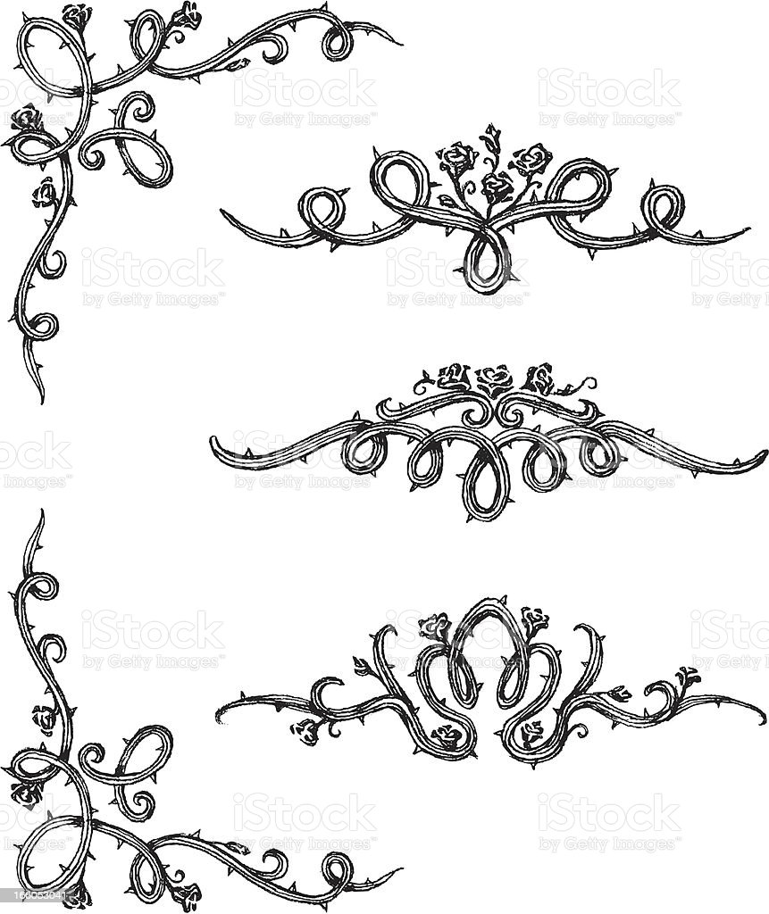 Vine Roses vector art illustration