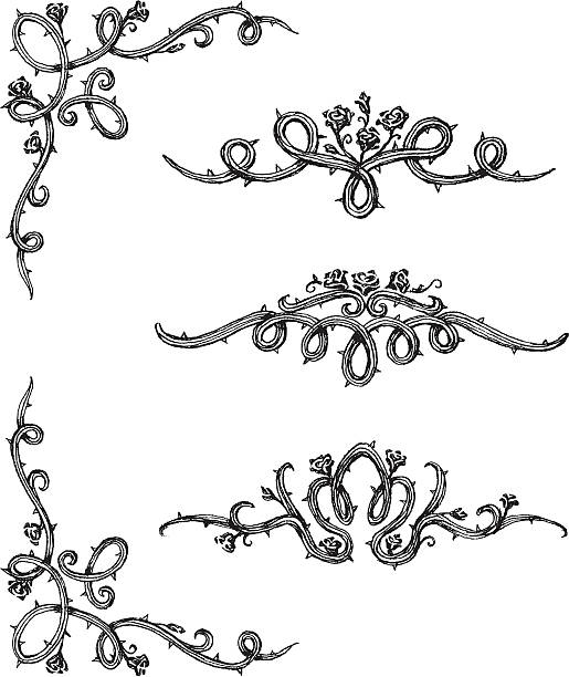 Vine Roses Set of thorny rose vine cascade in hand drawn sketch set. sharp stock illustrations