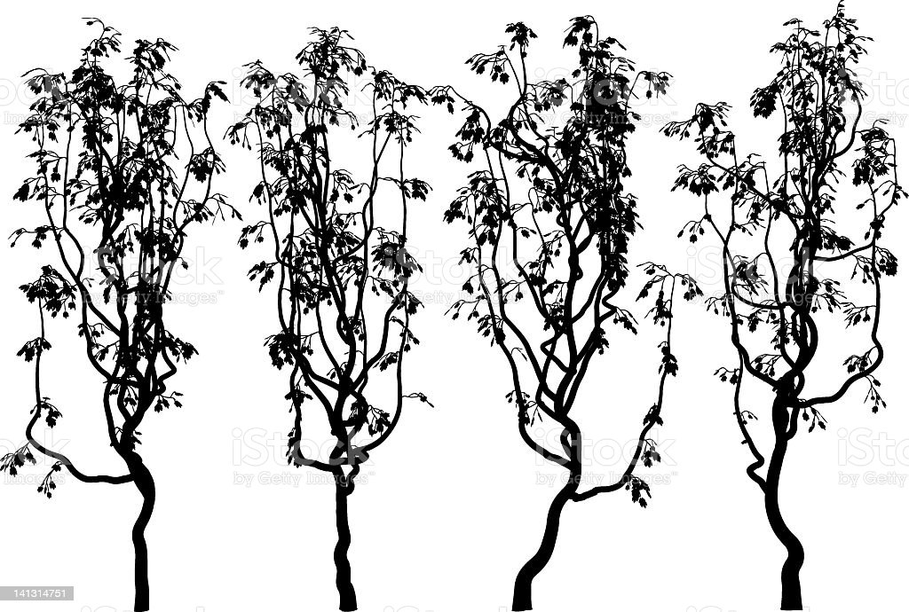 Vine Silhouette Stock Vector Art More Images Of Black And White