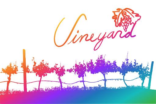 Vineyard Handwritten Rainbow