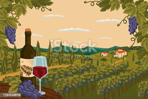 Vineyard landscape with grape tree field and winery farm on background. Red wine bottle with glass. Hand draw vector illustration poster.