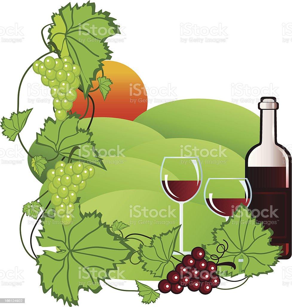 Vineyard vector art illustration