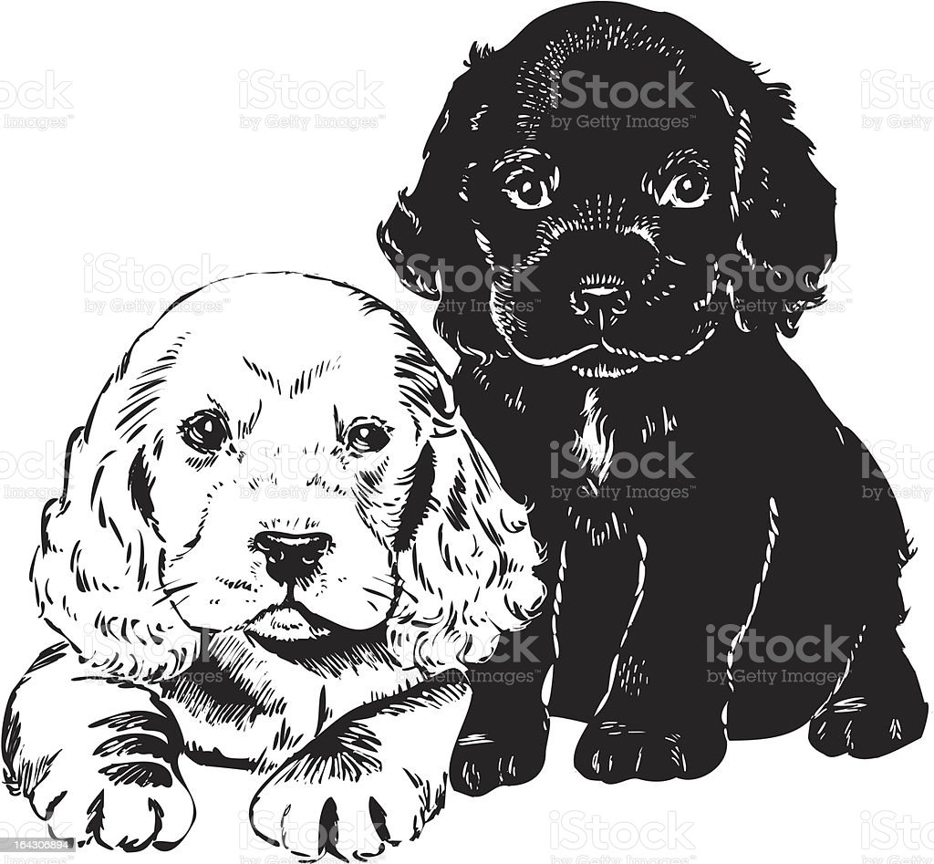 Vintage 1950s Puppies royalty-free vintage 1950s puppies stock vector art & more images of 1950-1959