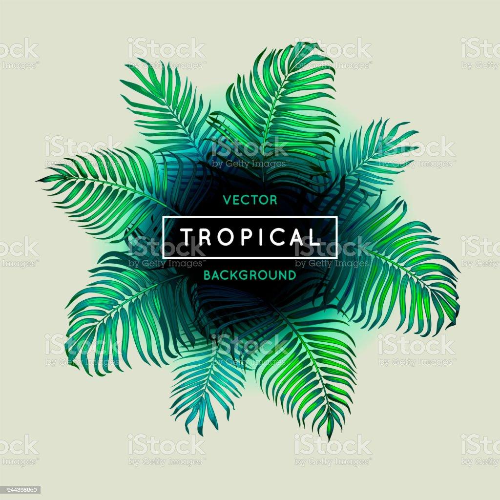 熱帯のビンテージ抽象的なベクトルの背景シュロを葉しますエキゾチックな