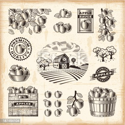 A set of fully editable vintage apple harvest elements in woodcut style. EPS10 vector illustration with clipping mask. Includes high resolution JPG.
