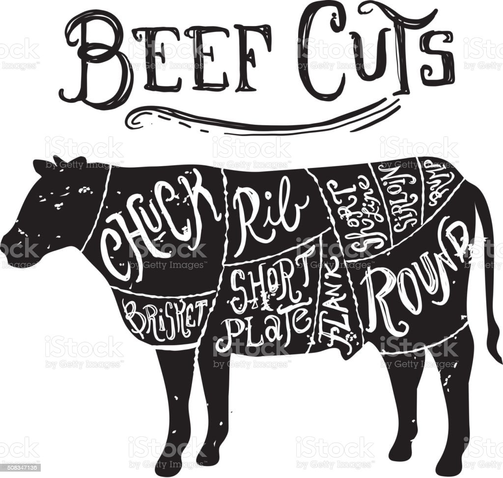 Vintage Beef cuts butcher diagram vector art illustration