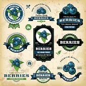 A collection of vintage styled blueberry labels. EPS 10 file, layered & grouped, with meshes and transparencies (shadows & overall effects only).