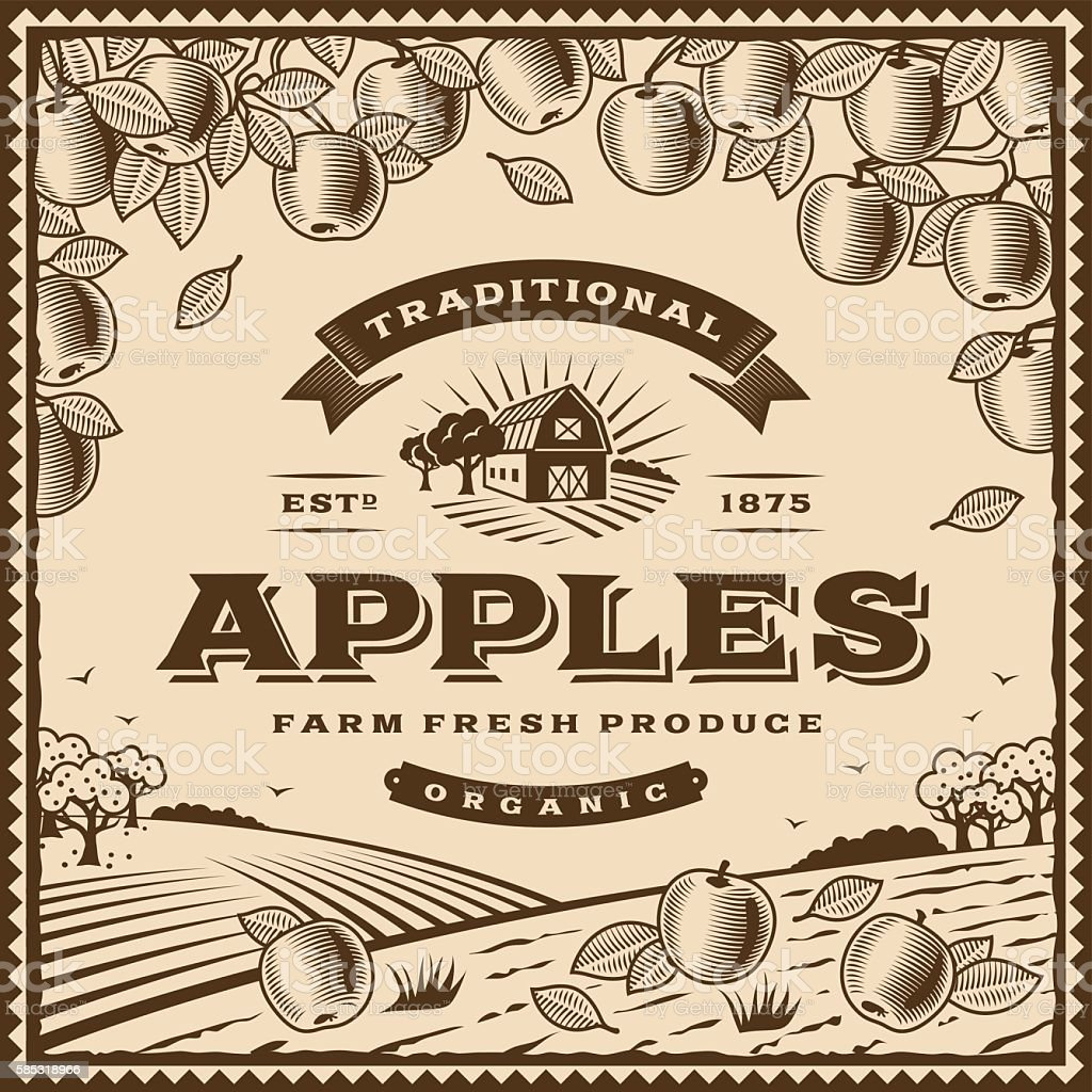 Vintage brown apples label vector art illustration
