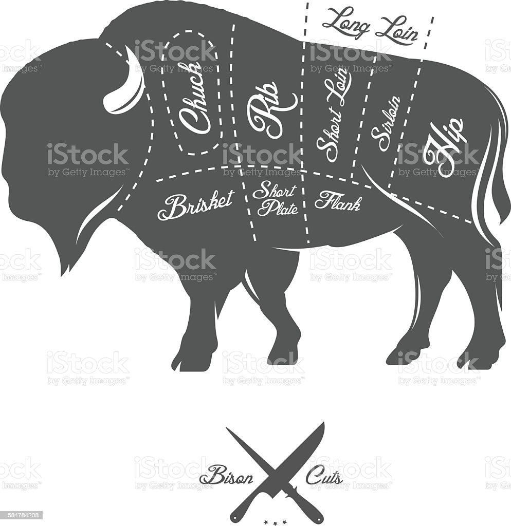 Vintage butcher cuts of bison buffalo scheme diagram vector art illustration
