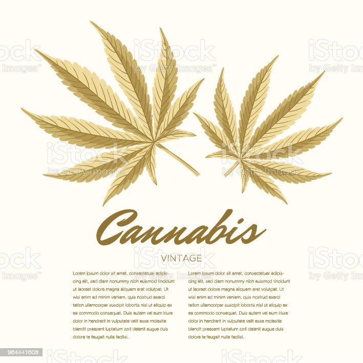 Vintage cannabis leaves. Vector Composition - Copy Space - Royalty-free Addiction stock vector