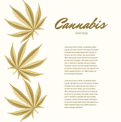 Vetores de Folhas De Cannabis Vintage Composição Do Vetor Espaço De Cópia e mais imagens de Baseado