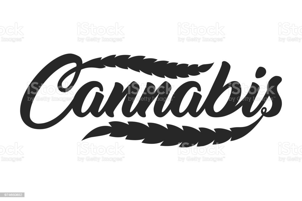 Vintage Cannabis Lettering Template Stock Vector Art More Images
