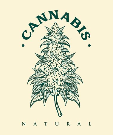Vintage Cannabis Monochrome for your work Logo merchandise clothing line, stickers and poster, greeting cards advertising business company or brands
