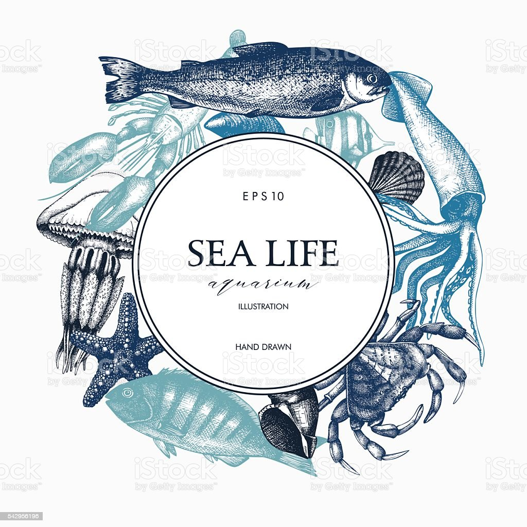 Vintage card design with sea life illustration vector art illustration