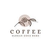 vintage coffee branch vector, coffee bean vector, coffee plant vector