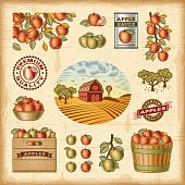 A set of fully editable vintage apple harvest elements in woodcut style. EPS10 colorful vector illustration with clipping mask. Includes high resolution JPG.