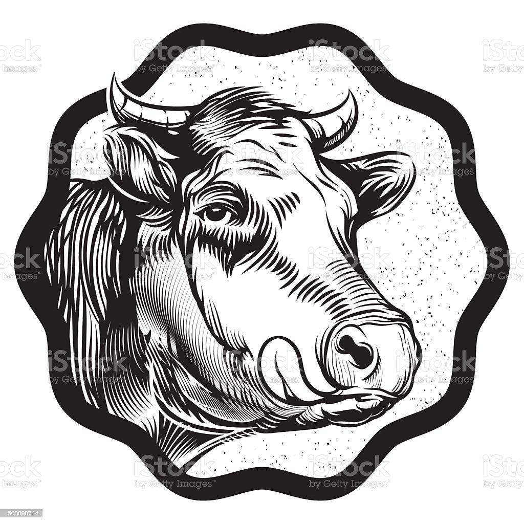 vintage cow's muzzle illustration vector art illustration