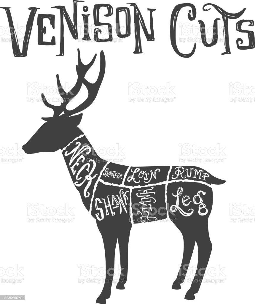 Sensational Vintage Deer Or Venison Cuts Butcher Diagram Stock Vector Art More Wiring 101 Cajosaxxcnl
