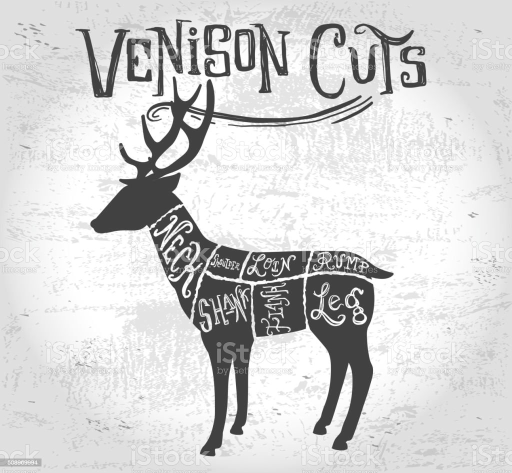 Super Vintage Deer Or Venison Cuts Butcher Diagram Stock Vector Art More Wiring Digital Resources Hetepmognl