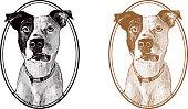 istock Vintage Dog 496707369