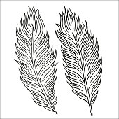 Vintage Feather vector set