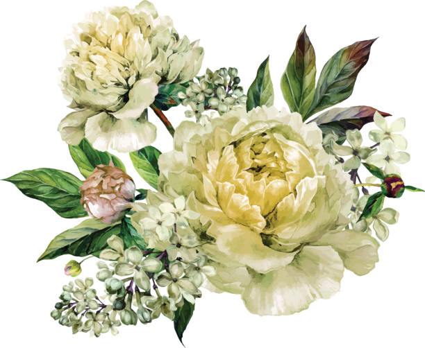 vintage floral bouquet of peonies - vintage flowers stock illustrations, clip art, cartoons, & icons