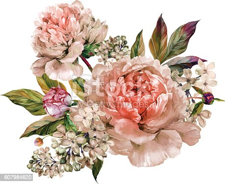 Vintage floral bouquet of light rose peonies and white lilac. Hand drawn watercolor botanical illustration isolated on white background. Summer floral peonies greeting card