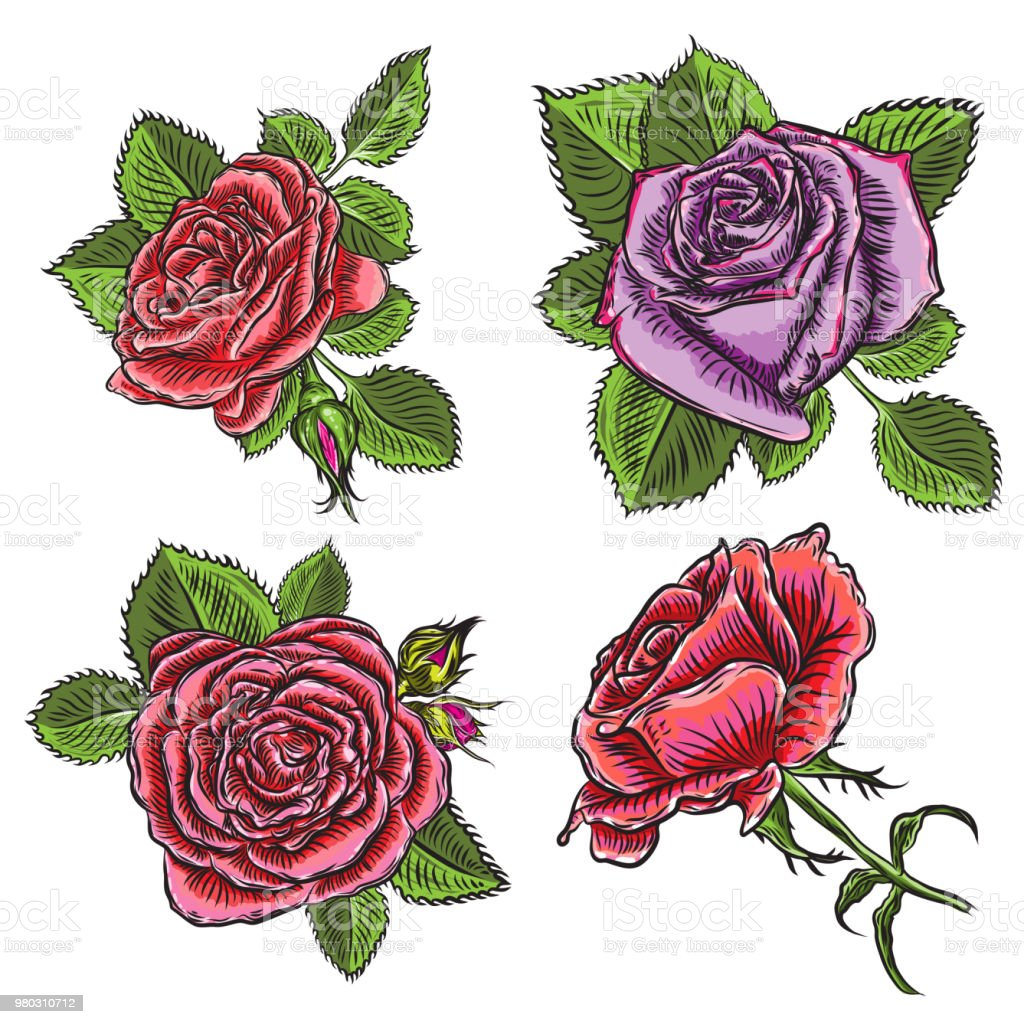 Vintage Floral Detailed Hand Drawn Rose With Leaves Set Victorian